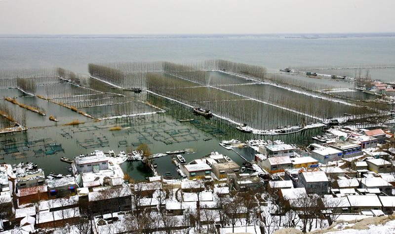微山湖冬韵