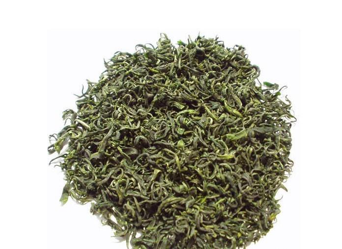 加之昼夜温差大,茶树生长发育慢,有充分时间积累养分,故崂山茶内含