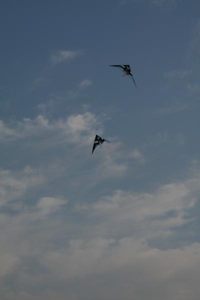 天空中飞翔的风筝
