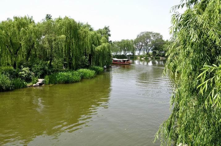 初夏明湖,柳风飘曳泛碧波21