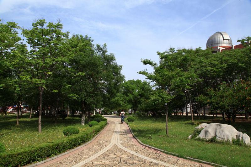 拍于枣庄学院,一名女生正走在校园的人字