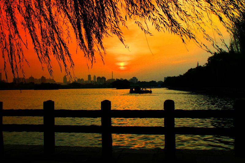 夕阳柳树河旁风景图片