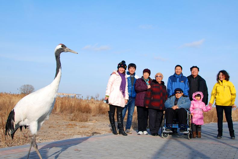 在黄河三角洲湿地,有很多的鸟,它们与人和平相处,在拍全家福的时候,一只丹顶鹤走了过来,全家福的中间是一个座轮椅的老人,他在家人的帮助下来到了这里,他们是幸福的一家人