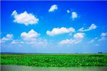 大美微山湖