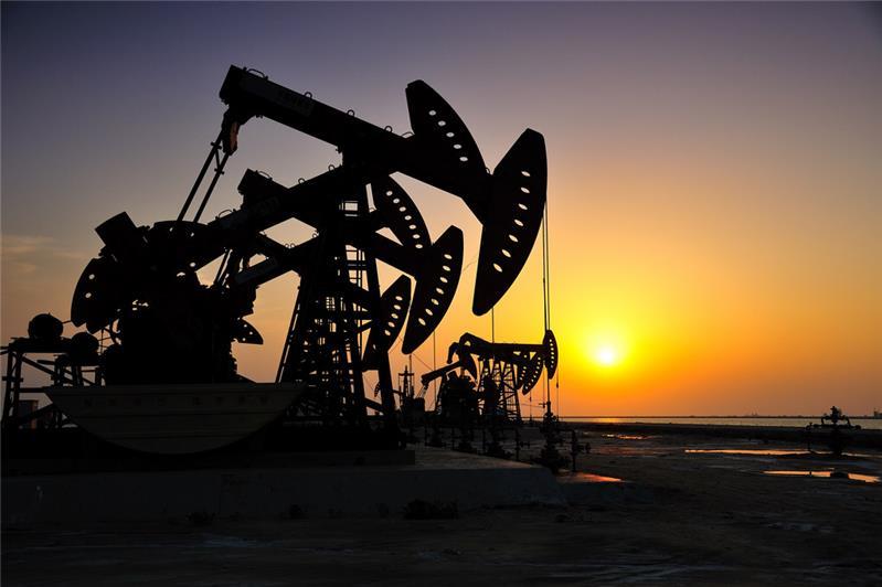"""抽油机是开采石油的一种机器设备,俗称""""磕头机"""",通过加压的办法使石油出井。 拍摄于山东东营"""