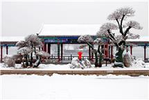 明湖雪景入画来