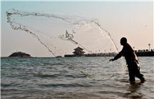 岛城捕鱼人