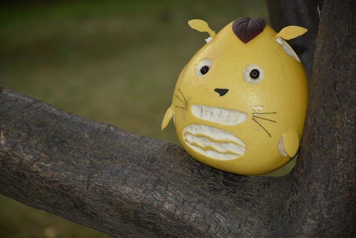 当前票数:     3390 作品简介           自己手工雕刻柚子龙猫,可爱