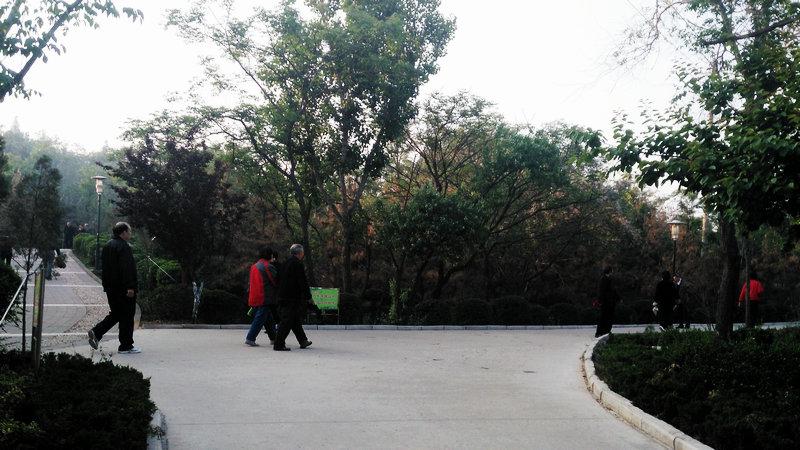 邹城铁山公园随拍