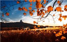 大乳山景区之秋