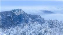 春雪泰山(二)