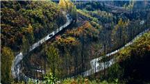 秋天的山路