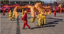 组照《欢庆中国年》
