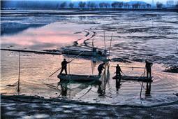 东平湖畔捕鱼忙