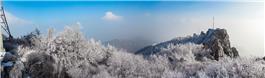 泰礴顶雾凇
