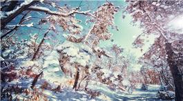 威海市文登区下大雪