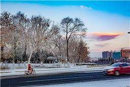冬天的一抹彩云