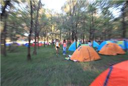 《槐林帐篷节》
