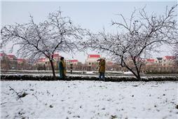 《河安雪景》