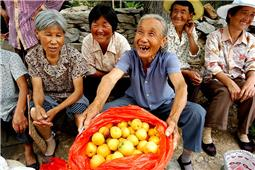 尝尝俺家的大甜杏!