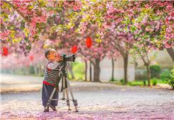 小小摄影家
