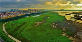 潮汐湖湿地公园