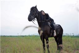 马背上的女孩