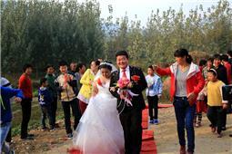 山村的婚礼