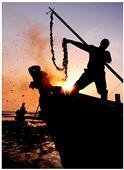 《渔民的节日》