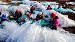 渔家海边织网