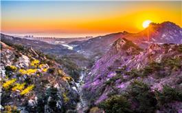 春暖花开大珠山
