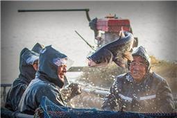 渔工的笑脸