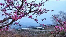 开往春天列车