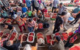 繁忙的大樱桃市场