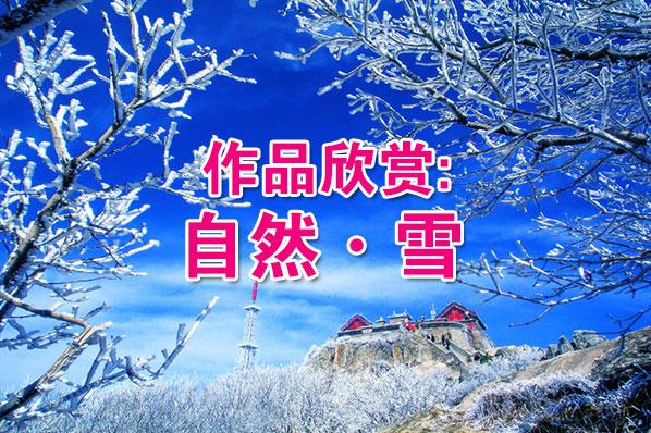 作品赏析:自然•雪