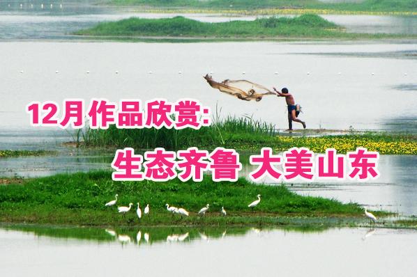 12月作品欣赏:生态齐鲁 大美山东