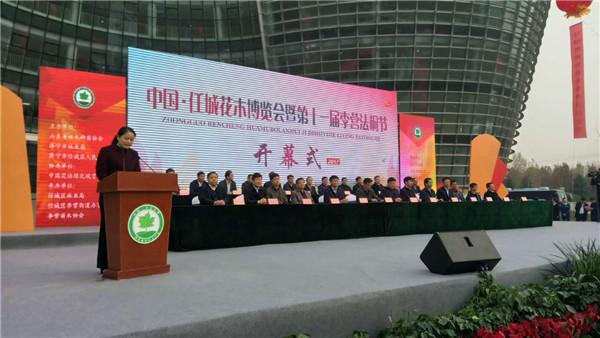 中国•任城花木博览会暨第十一届李营法桐节隆重举行