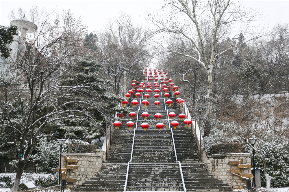 银装素裹 景色迷人 淄博博山大雪之后美如画