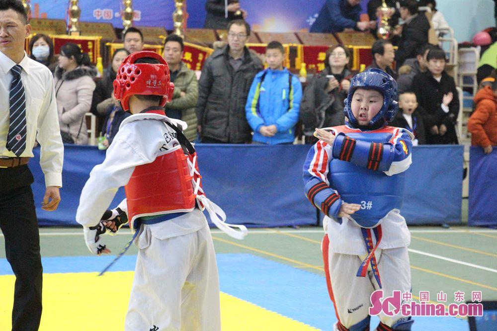 <br/>  参赛队员大多为5&amp;mdash;15岁跆拳道学员,共39个代表队、共580余人参加此次比赛。