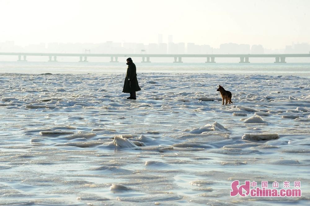 <br/><br/>  2018年1月12日,一名渔民在青岛市胶州湾红岛沿岸结冰区域查看冰情。<br/>