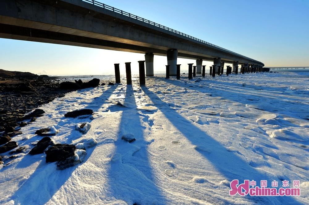 <br/><br/>  2018年1月12日,受北方强冷空气影响,青岛市胶州湾水域进入冰冻期,在胶州湾跨海大桥红岛段出现大范围海冰。<br/>