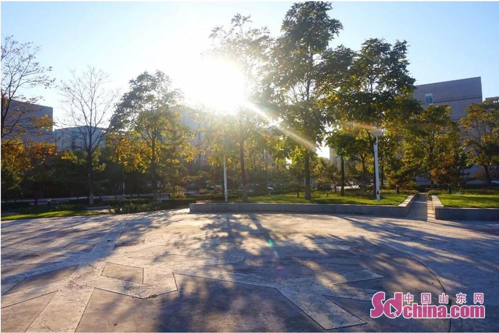<br/>  NO.6 钟山路游园<br/>  东营区医院东侧<br/>  2016年游园建设工程<br/>