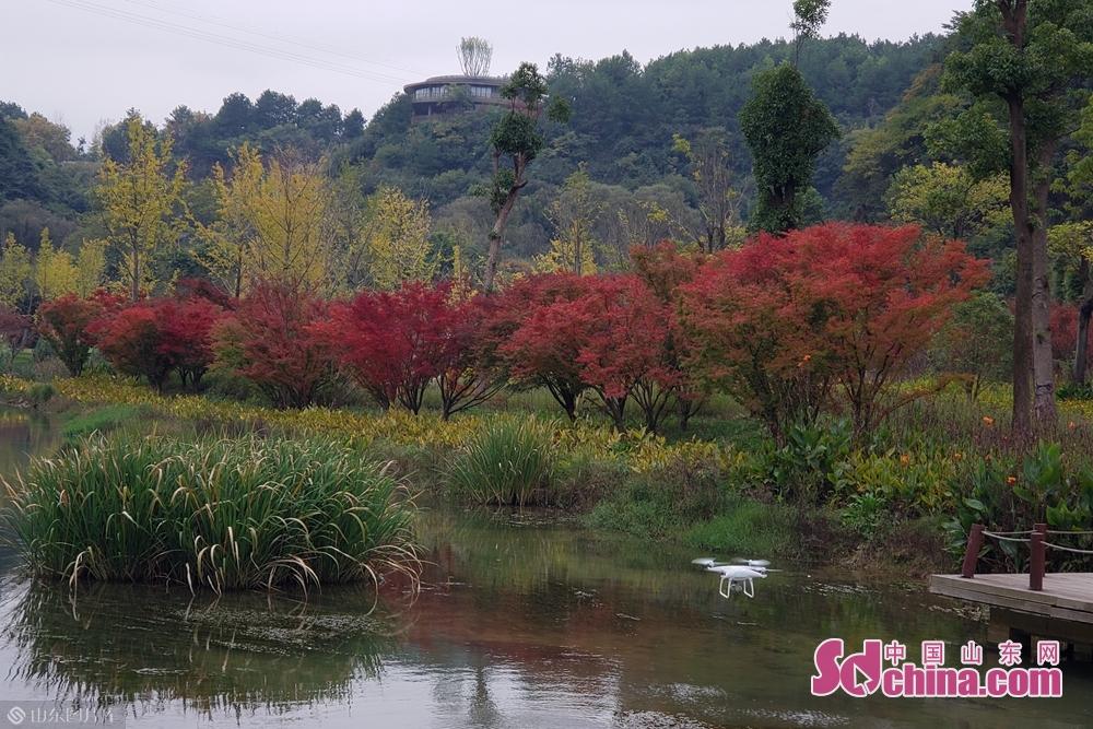 天河潭美景。(摄影:李红梅)<br/>