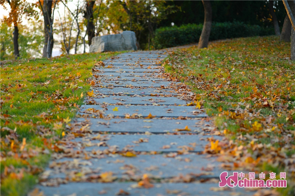 <br/>  落叶布满的青石板路,缓缓的向着远方。<br/>