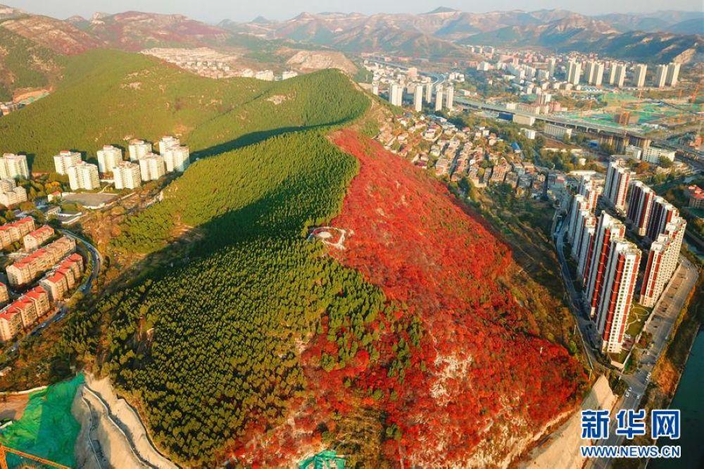 空から見る済南市の楔子山の景色。<br/>