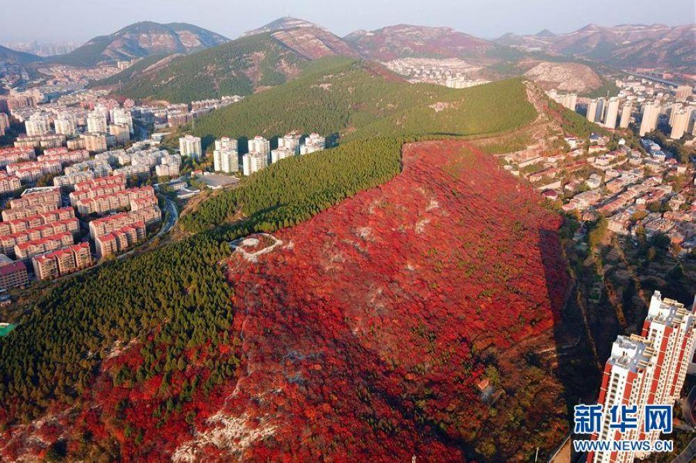 空から見る済南市の楔子山の景色。