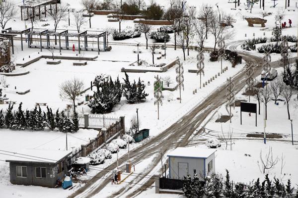 烟台再迎降雪 气象部门发布道路结冰预警信号
