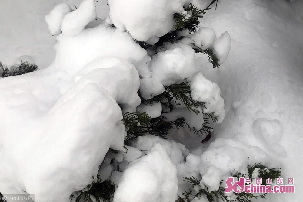 <br/>  记者昨日从气象部门获悉,受暖湿气流和弱冷空气的共同影响,10日后半夜开始到11日,烟台有一次较为明显的降雪天气过程,预计全市阴有中雪,烟台市区和北部的蓬莱、长岛等地局部大雪,市民注意防范。<br/>