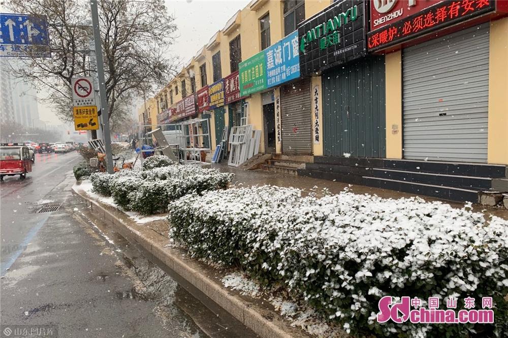 <br/>  飘飘洒洒的雪落在树上、车上、楼顶上,到处是白茫茫的一片,把潍坊打扮的一派银装素裹。<br/>