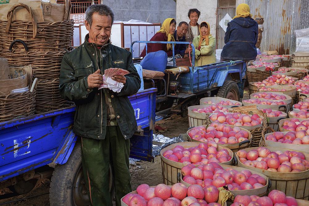 《喜获丰收》烟台是全国最大的苹果生产基地,&amp;ldquo;烟台苹果&amp;rdquo;是国内唯一一个价值过百亿的果业区域品牌。(李丰艳)<br/>